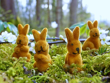 Bunnies, Moss, Easter, Forest, Easter Bunny, Cute