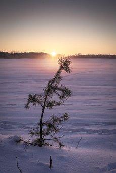 Winter Dream, Sunset, Nature