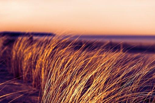 See, Ozean, Meer, Sonnenlicht, Küste, Lansdschaft