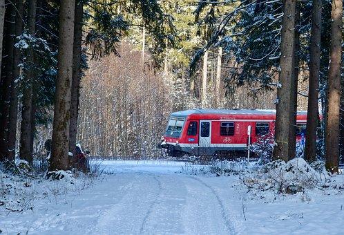 Train, Snow, Forest, Landscape, Nature, Railway