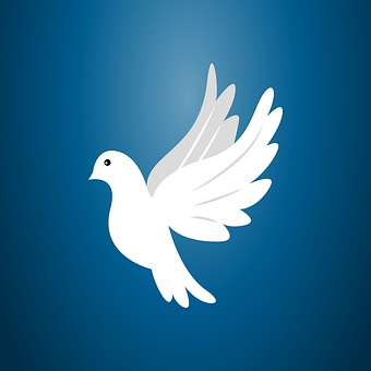 Dove, Peace, Pigeon, Bird, Symbol, Freedom, Flying