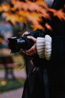 Camera, Hand, Shooting, Dslr, Photography, Body, Human