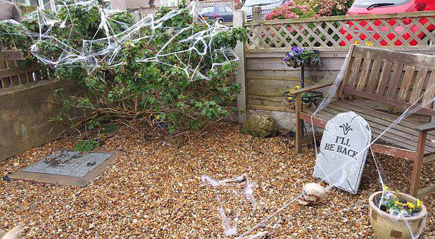 Garden, Halloween, Fall, Pumpkin, Autumn, Skeleton