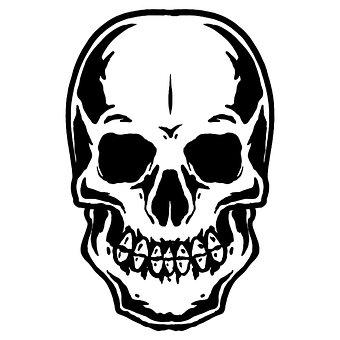 Skull, Framework, Parts Of Body, Dead, Bone, Head