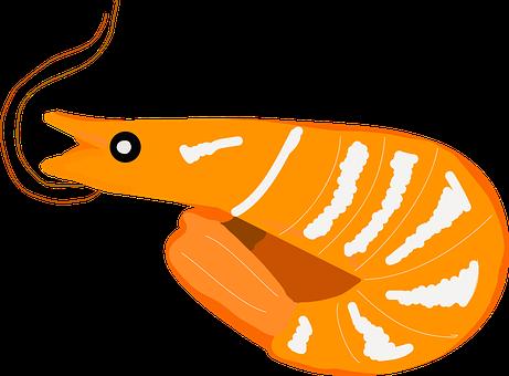 King Prawns, Seafood, Prawns