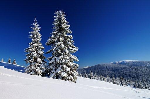 Mountains, Winter, Beskids, Poland, Landscape