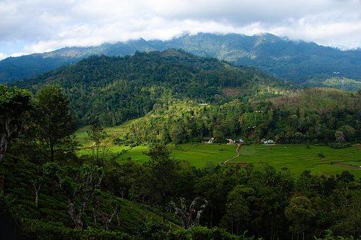 Landscape, Sri Lanka, Madolsima, Hills, Mountains