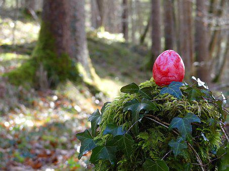 Easter Egg, Red, Easter, Forest, Trees, Away, Ivy, Moss