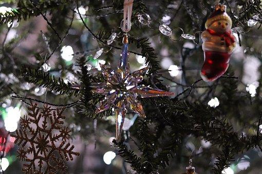 Christmas, Holiday, Tree, Decoration, Ornaments