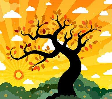 Tree, Sun, Forest, Nature, Landscape, Trees, Sunset