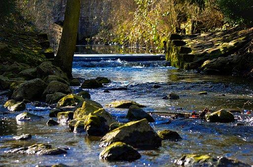 River, Water, Nature, Landscape, Meditation, Sun