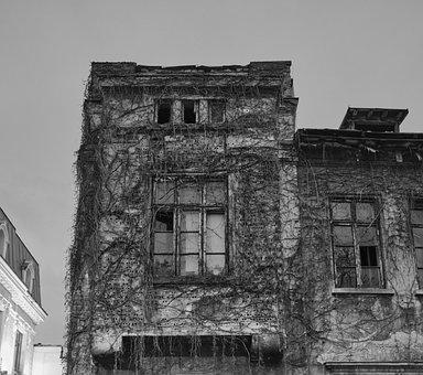 Decrepit, Old Building, Ivy, City, Old, Building, Eerie