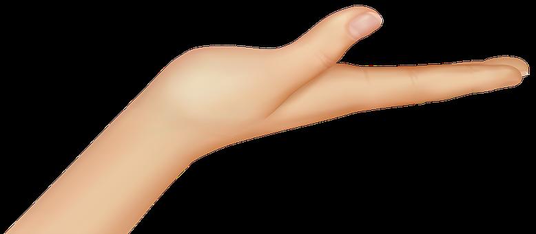 Hand, Hold, Palm