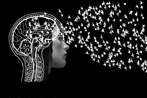 Woman, Face, Brain, Thoughts, Letting Go, Development