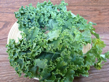 Kale, Green, Vegetable, Curly Kale, Plant, Produce