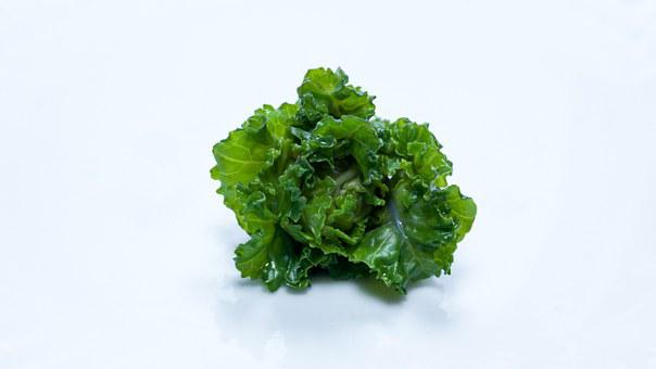 Flower Sprout, Vegetable, Brussel Sprout, Curly Cale