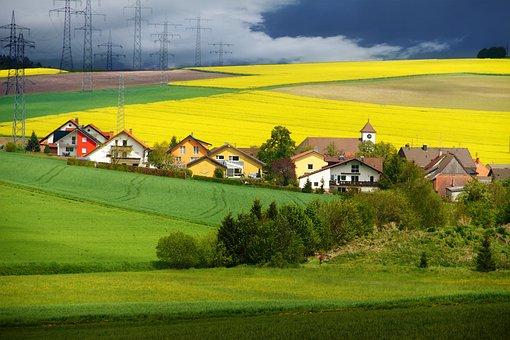 Fields, Mustard, Nature
