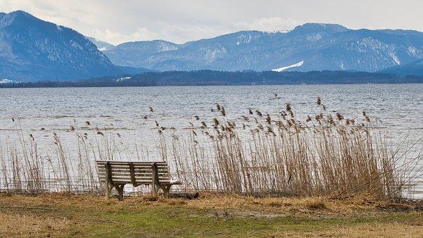Bench, Lake, Mountains, Reed, Grasses, Bank, Seat