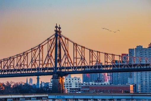 Bridge, Birds, Sky, Sunset, City, New York, Nyc