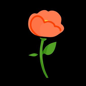 Flower, Plant, Red, Nature, Rose, Bloom, Petals, Spring