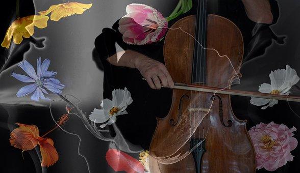 Music, Classic, Instrument, Soundbody, Fantasy, 3d