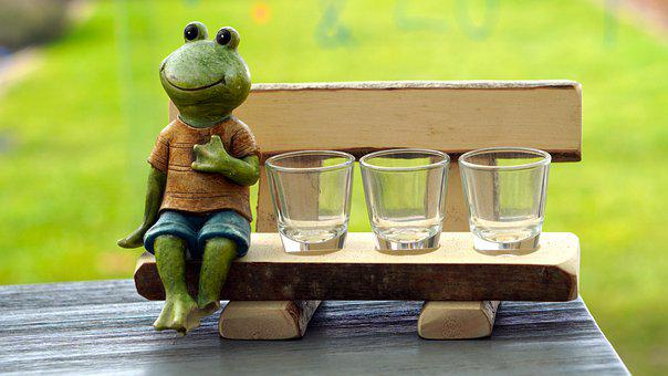 Frog, Figure, Glasses, Bank, Funny