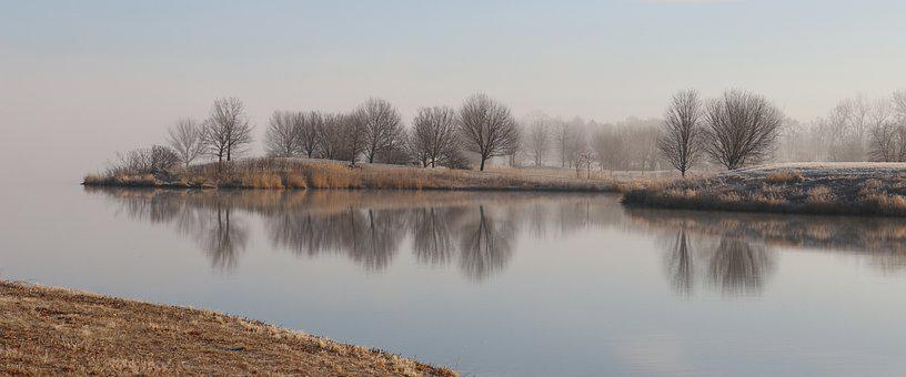 Water, Reflection, Foggy, Lake, Nature, Tree, Landscape