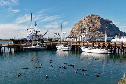Morro Bay, California, Ocean, Beach, Rock, Tourism
