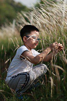 Kids, Sunshine, Child, Fun, Happy, Nature, Childhood