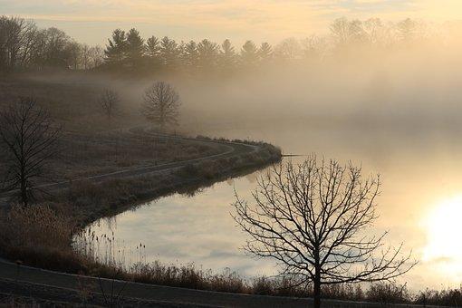 Foggy, Morning, Sunrise, Nature, Hike