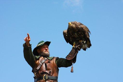 Man, Falcon, Bird, Feathers, Plumage, Austria, Salzburg