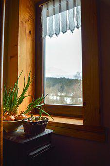 Pot, Plants, Window, House, Mountains, Spring, Tourism