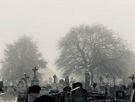Cemetery, Fog, Trees, Grave, Tomb, Tombstones