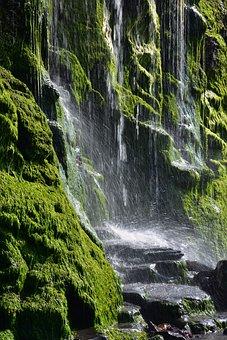 Waterfall, Moss, Rocks, Falls, Water, Splash, Lichen