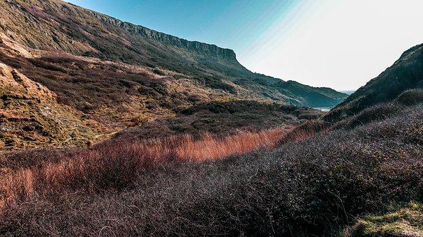 Cliff, Meadow, Coast, Mountain, Sunset, Rock, Grass