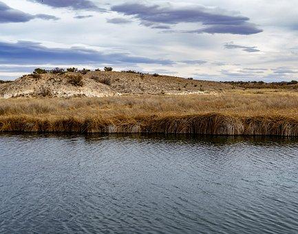 River, Grass, Desert, Oasis, Water, Nature, Cloudy