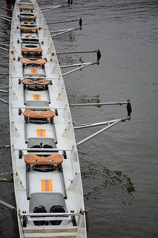 Rowing Boat, Boat, River, Seats, Fixed Seats