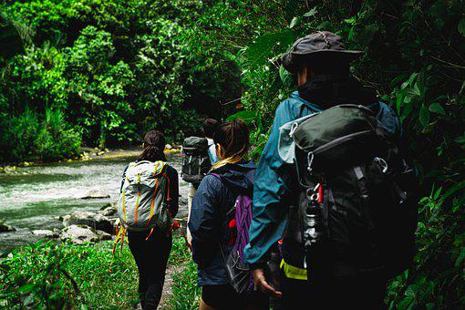 Hiking, Forest, River, People, Trekking, Backpacking