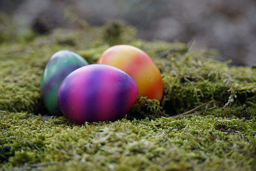 Eggs, Easter Eggs, Nest, Moss, Painted, Search, Easter
