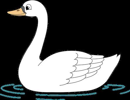 Swan, Bird, Wild Birds, Water, Nature