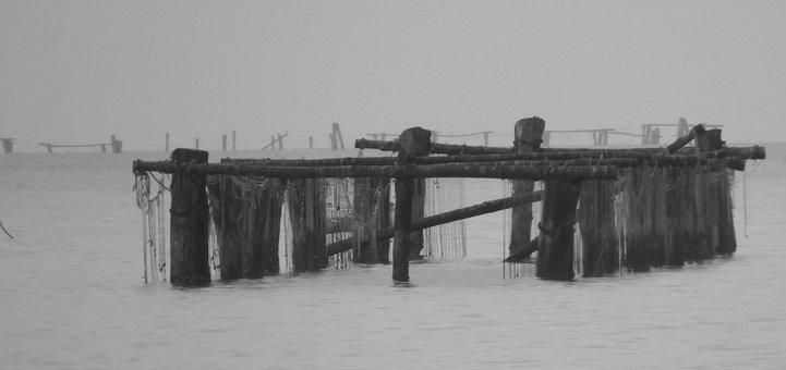 Black White, Lagoon, Chioggia, Fish Nets