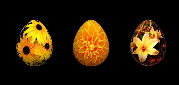 Eggs, Floral, Easter, Spring, Egg, Decoration, Colorful