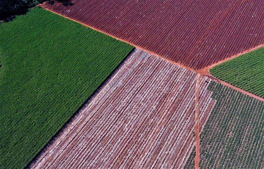 Fields, Farm, Rural, Farmland, Countryside, Landscape