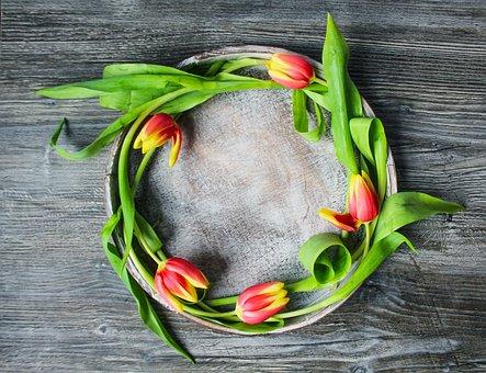 Flowers, Tulips, Wreath, Crown, Spring, Spring Bloomer