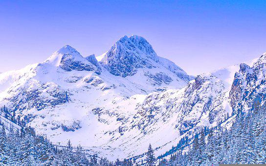 Mountains, Peak, Snow, Trees, Forest, Valley, Winter