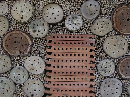 Insect Hotel, Nesting Help, Drill Holes, Entry Openings