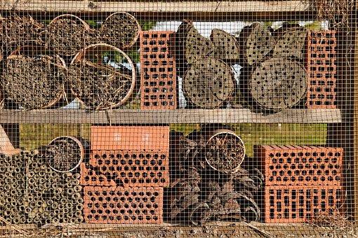 Bee House, Wild Bees, Garden, Closeups, Background