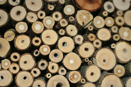 Insect Hotel, Insect, Breeding Help, Bee Hotel