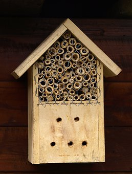 Insect Hotel, Insect, Insect House, Insect Box