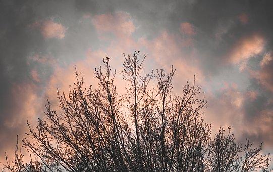 Landscape, Sunset, Blue, Sun, Background, Light, Sky